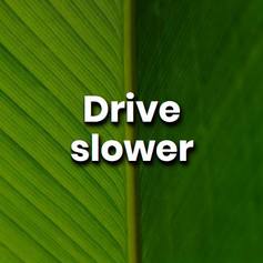 By slowing your travel speed by 10km/h, you could improve your car's fuel consumption by 25% and reduce the amounts of CO2 being produced.