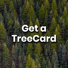 This is a free top-up debit card that uses profits earned to plant trees. So, you can have an impact even when buying yourself a coffee. 80% of profits go straight to reforestation. No greenwashing.