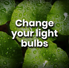 Energy efficient bulbs can last up to 25 times longer than traditional bulbs, they also use 80% less power to provide the same light. Making this switch really is a bright idea.