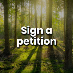 Signing a petition lets your government, corporations and politicians know what issues need to be addressed and you can set the agenda for them to work to.