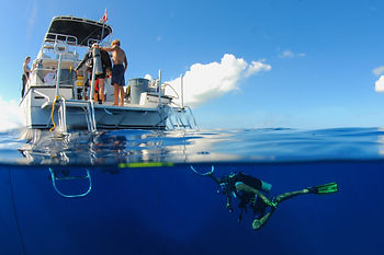 Red Sail Sports Nitrox Dive Package Grand Cayman