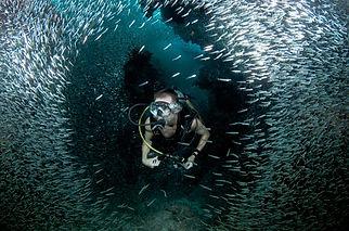 Dive Package Deals Grand Cayman