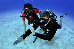 Underwater Navigator Specialty Grand Cayman