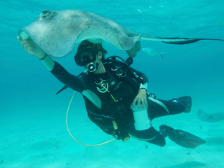 Stingray City - the worlds best 12 foot dive?