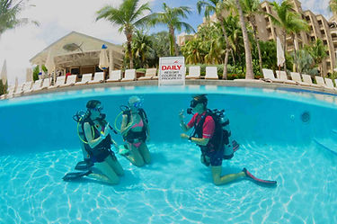 Try Diving Grand Cayman