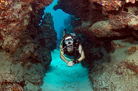 Grand Cayman Diving - Caribbean Producer Services