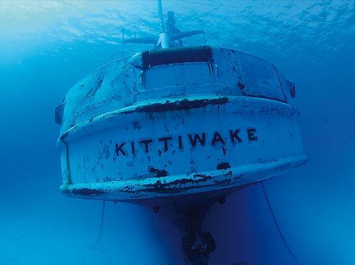 Kittiwake Wreck One-Tank Dive