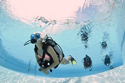 Open Water Referral Grand Cayman