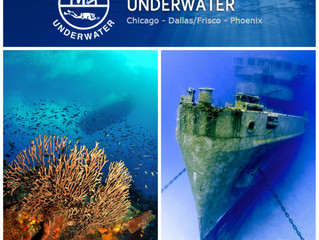 Visit us at Our World Underwater