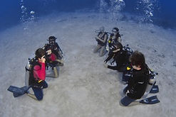 Grand Cayman Open Water Referral