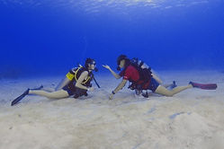 PADI Open Water Diver Grand Cayman