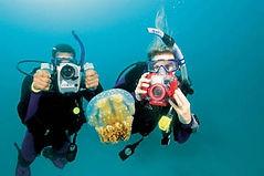 PADI DUP Specialty Grand Cayman