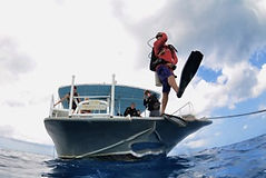 PADI Boat Diver Specialty Grand Cayman