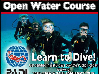 LEARN TO DIVE IN 2015!!!