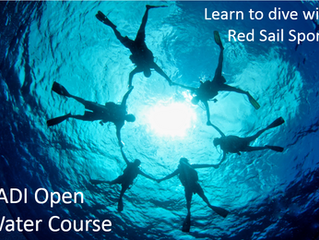 What's the best way to learn to dive?
