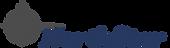 Logo - Nstar.png