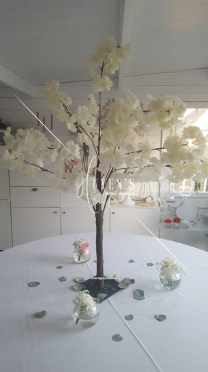 Arbre cerisier blanc 1.20m et ses bulles florales
