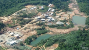 Serabi faz acordo com governo do Pará para voltar a operar mina de ouro Palito