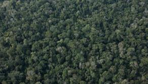 Novas atividades de mineração são autorizadas em Mato Grosso do Sul