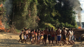 Anglo American abre mão de pesquisas em terras indígenas
