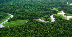 Estudo aponta prejuízo de US$ 5 bi com mineração em terras indígenas