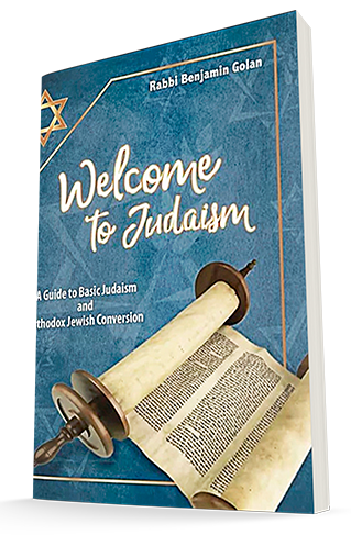 book_welcome_to-judaism_cover_webSize.png