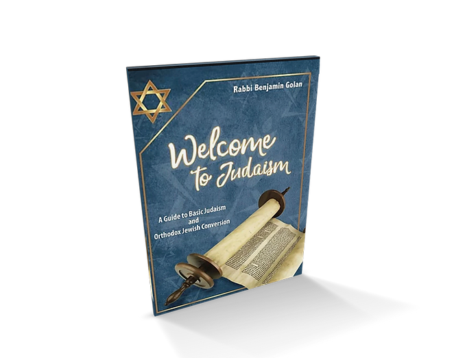 book_welcome_to-judaism_cover_02_web.png