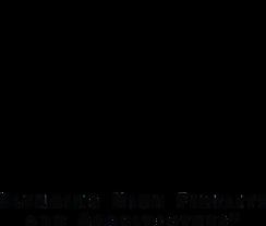 Niles_Audio-logo-05AC63A3F0-seeklogo.com