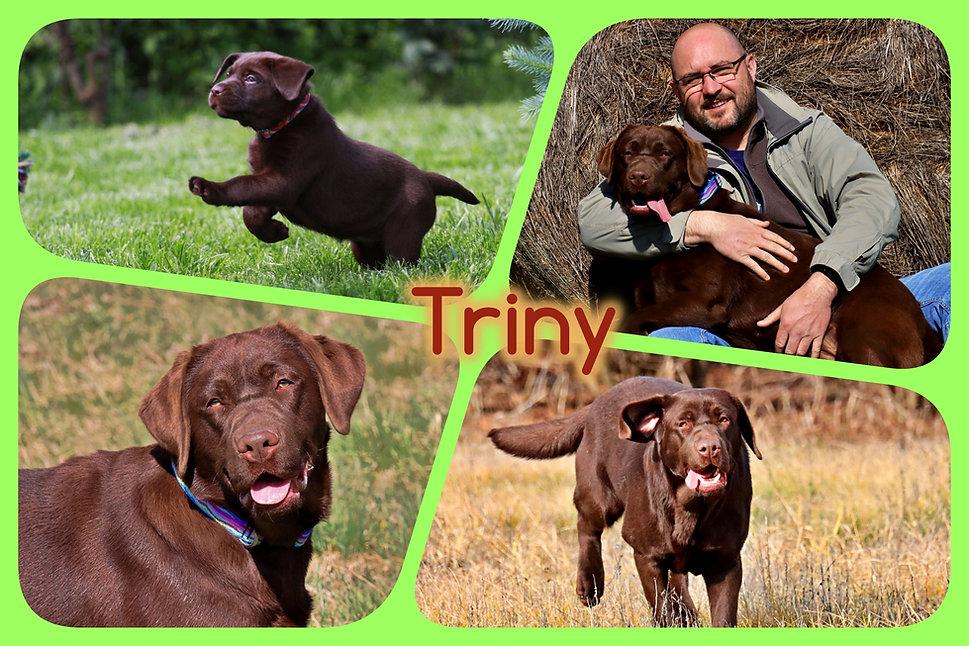 triny.jpg