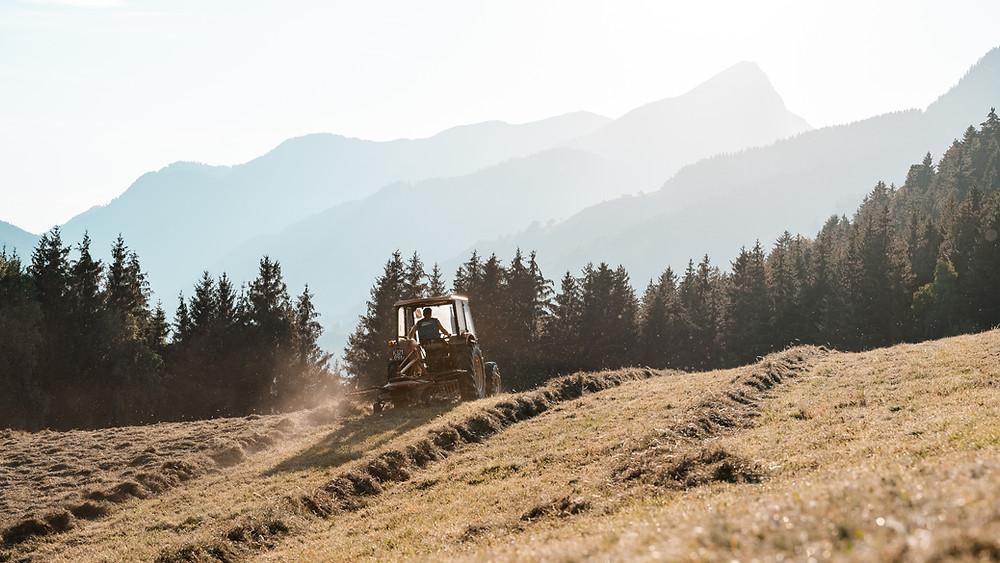 Bauernhof, Landleben, Kärnten, Natur, Landschaft, Landarbeit, Sonnenuntergang, Österreich, Landwirtschaft Kärnten, Traktor, Feldarbeit, Carinthia