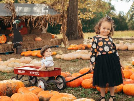 Hawk's Pumpkin Patch Photo Tips