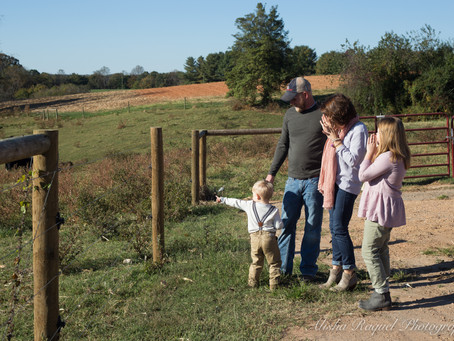 The Whitaker Family Farm