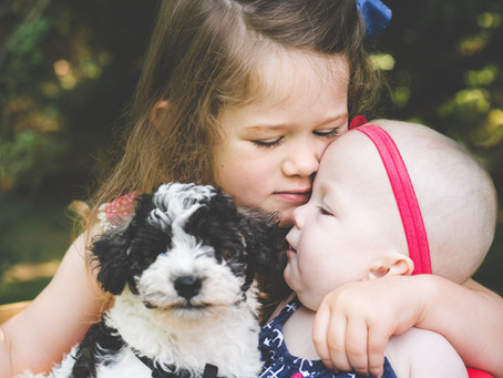 Babies, Puppies & Bubbles!