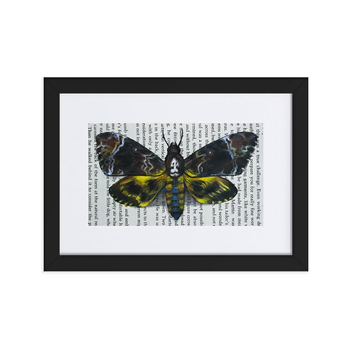Silence Death's-Head Moth Framed Poster With Mat
