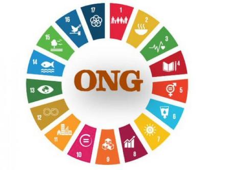 ONG. Entre expertise et militance, la construction d'une opinion publique