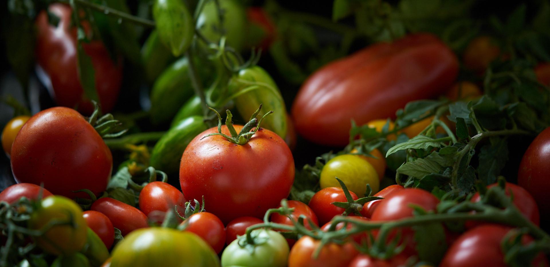 Foodshoot Kugelberg1576.jpg