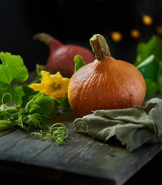 Foodshoot Kugelberg1883.jpg