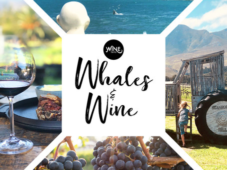 WineTots Blog: Whales & Wine - Our Whale of a Wine Tour