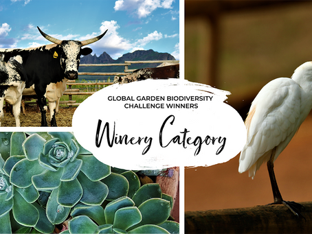 Winners of the first Global Garden  Biodiversity Challenge: Winery Category!