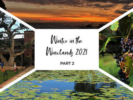 Family Escapes in the Winelands this Winter! Part 2!