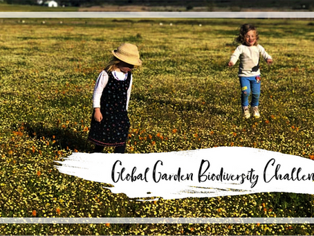 Global Garden Biodiversity Challenge