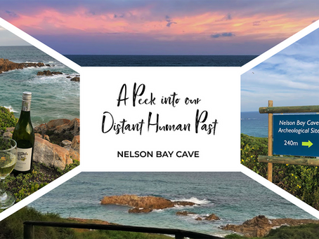 A Peek into our Distant Human Past at Nelson Bay Cave