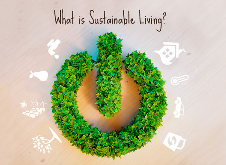 What is sustainable? Why sustainable?