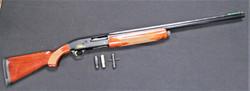 Browning Gold Hunter 12ga