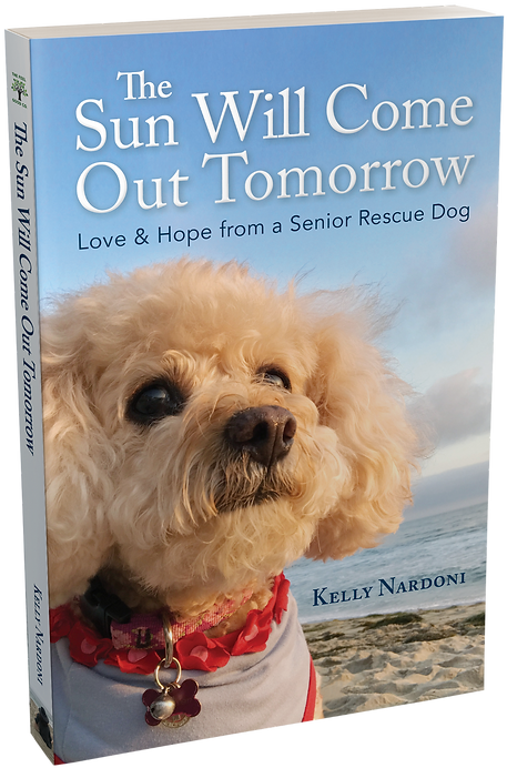 The Sun Will Come Out Tomorrow: Love & Hope from a Senior Rescue Dog