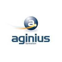 logo_Aginius_2011