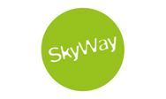 Skyway.png