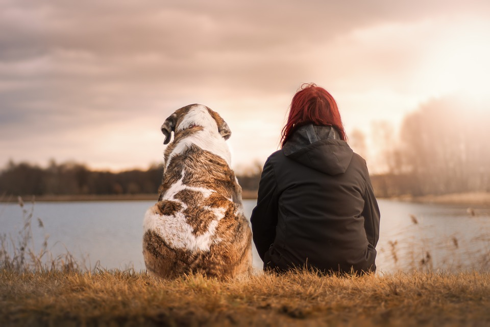 An Enduring Love - Sitting With Dog