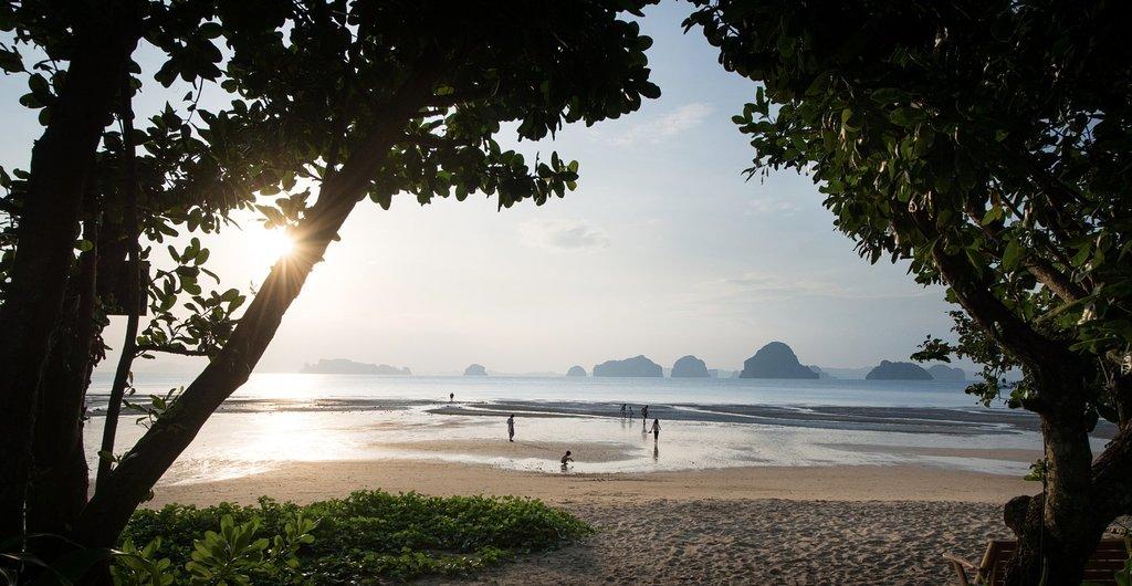 low-tide-beach