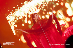 daf BAMA Performance 2015 (53)